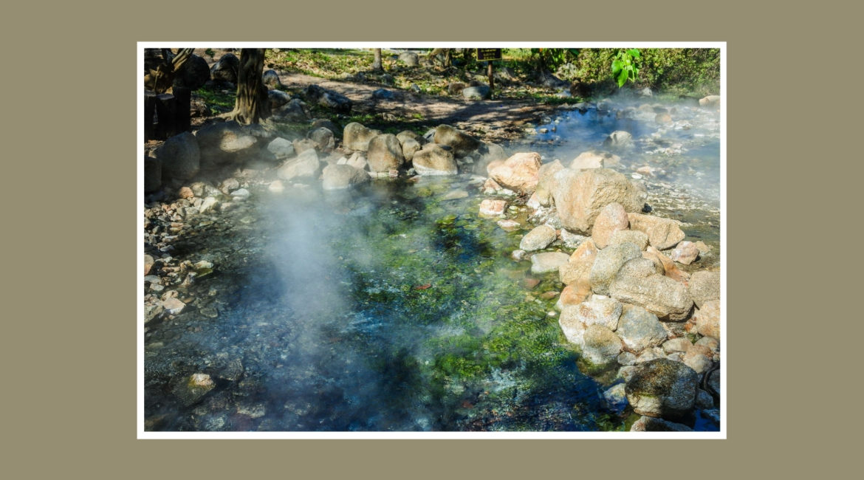 Nelson Hot Springs Blog